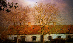 """""""Home isn't a place, its a feeling"""" (genevieve van doren) Tags: house maison trees arbres textures"""