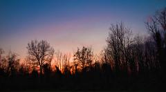 skycolor (Roberto_Mosca) Tags: