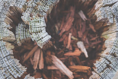 Rotten wood (PaulHoo) Tags: vintage detail closeup fujifilm x70 topaz labs editing background 2018 polder wood old rotten decay hole dead structure pattern texture
