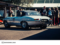 1961 Jaguar E-Type (Entrant/Driver John Minshaw and Phil Keen) at the 2018 Goodwood Revival (Dave Adams Automotive Images) Tags: 2018 70200 automotive automotivephotography car carvintage cars chichester classiccar classicdriver daai daveadams daveadamsautomotiveimages driveclassics drivetastefully dukeofrichmond fordwater gt goodood goodwoodrevival goodwoodrevival2017 iamnikon kinrara lavant lordmarch motorsport motorsportphotography nikon paddock petrolicious pistonheads ractt racing revival sigma sigmaart stmarys sussex vintage vintagecar whitsun wwwdaaicouk 1961 jaguar etype goodwood classicsportscar goodwoodstyle grrc sportscarsociety becauseracecar carlifestyle luxurycars amazingcars247 auto sportscar vintageracing automotivedaily classic classiccars sportscars