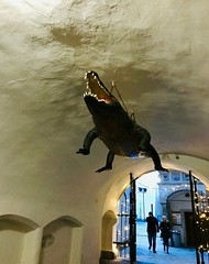 Stará radnice (stefan aigner) Tags: brno brünn crocodile czechrepublic krokodil oldtownhall staráradnice tschechien tschechischerepublik