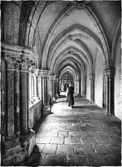 contemplating... (kurtwolf303) Tags: monastery stiftzwettl monk mönch austria österreich kurtwolf303 monochrome sw bw kreuzgang cloister person building gebäude omd olympusem1 microfourthirds mirrorlesscamera