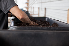 Seed Starting at Troy Farm (troycommunityfarmwi) Tags: seeds farm farming communitygroundworks communitysupportedagriculture csa wisconsin community organic organicfarming madisoncsa wicsafarm