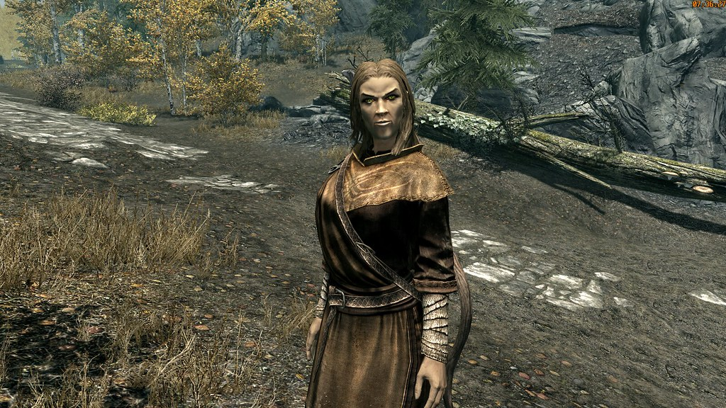 The World's Best Photos of altmer and mage - Flickr Hive Mind