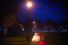 Panasonic Lumix S1 camera test shot (prototype camera)-024 (Edmond Terakopian) Tags: 50mm bicycle bike cold cycle dark ealingcommon footpath lamp leica light lumix mirrorless night noctilux novoflexadapter park path sseries s1 shadow treet winter london unitedkingdom gbr