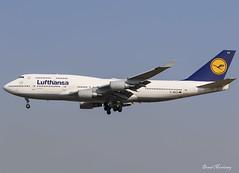 Lufthansa 747-400 D-ABVS (birrlad) Tags: frankfurt fra international airport germany aircraft aviation airplane airplanes airline airliner airlines airways arrival arriving approach finals landing runway lufthansa boeing b747 b744 747 747400 747430 dabvs