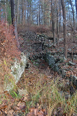 Forestburg Ruins (rchrdcnnnghm) Tags: abandoned foundation ruin forestburgny sullivancountyny