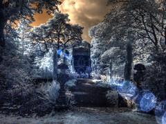 "The ""POEM at Bodnant gardens (Blueman-2) Tags: 2018 ir ir720nm infrared infra red olympusepl1 olympus1242mmf3556 olympus epl1 bodnantgardens canonef28135f3556is"