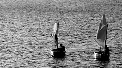 Two (patrick_milan) Tags: sail black white sea mer boat optimist sidelit water portsall ploudalmezeau