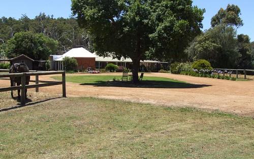 46 Newman Avenue, Camp Hill QLD