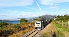 El maderas y sus humaredas (javivillanuevarico) Tags: galicia renfe trenes líneaferrolbetanzos