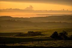P2241835 Arabella Country House (Dave Curtis) Tags: victoria greatoceanwalk sunset arabellacountryhouse arabella farm 2014 australia em5 omd olympus places september wa westernaustralia