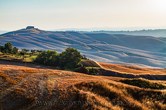 Rolling Hills (pongo 2007) Tags: tuscany italy pongo2007