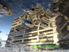 Building Vesicles (andressolo) Tags: building buildings city urban town street vesicles cellular reflection reflections reflejos distortions water agua puddle abstract abstracto