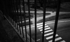 S T R I P E S (David Fóti) Tags: street streetphoto streetphotography streetlife stranger blackandwhite blackandwhitephoto city citylife citizens construction bars bar metalbar cyclist bicyle bigcitylife bnw monochrome urban stphotographia