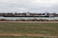 mich_gl112818ph_rb (rburdick27) Tags: stclairriver tug barge tankbarge michigan greatlakes scenicmichigan porthuron