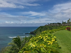 2018.08 Kauai 007.jpg (surf4life808) Tags: princeville hawaii unitedstates us