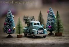 Merry Christmas (HTT) (13skies (Physio)) Tags: htt truck christmas hauling xmastree bluetruck decoration season toy happytruckthursday trucks trees festive