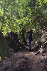 KLoE_img_9939 (kloe_chan) Tags: joaquin miller park hike oakland berkeley bay area family trees