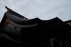 DSCF7047 (raich_foto) Tags: fujifilm fujifilmxseries fujinon fujinonlens xpro2 富士フイルム