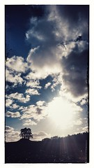 Hügelgrab im Maisacker (IIIfbIII) Tags: naturephotography natur naturfotografie mv mecklenburgvorpommern mecklenburg müritznationalpark müritz anker hügelgrab mais landschaftsfotografie landscapephotography landscape handyfotografie handy sony clouds wolken heaven winter photography