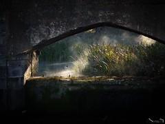 El Güeyu Deva (Jaime Martin Fotografia) Tags: asturias deva nature light gijon