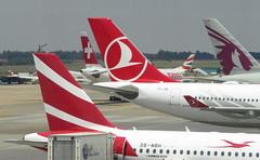 O.R Tambo Airport, Johannesburg (blafond) Tags: turkishairlines qatarairways airport aéroport ortambo terminal avions airplanes jets