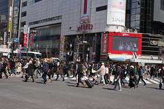 RICOH GR 60 (HAMACHI!) Tags: tokyo 2019 japan ricoh ricohgriii ricohimaging ricohgr gr gr3 griii loadtest cameratest shibuya