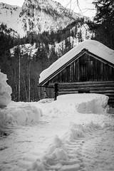 mountain hut (gotan-da) Tags: mountain winter blackwhite schwarzweiss noiretblanc blackandwhite bw monochrome snow