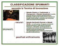 CLASSIFICAZIONE SPUMANTI (Sparkling Wines of Puglia) Tags: spumante sparklingwine classificazionespumanti spumanti bollicine