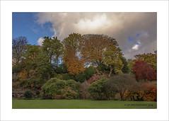 Quarry Bank Autumn (prendergasttony) Tags: nikon d7200 nationaltrust nt cheshire manchester colour garden clouds sky