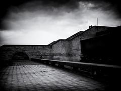 Linnahall XIV (Feldore) Tags: tallinn estonia linnahall concert hall abandoned soviet brutalist brutalism feldore mchugh em1 olympus 1240mm concrete steps derelict