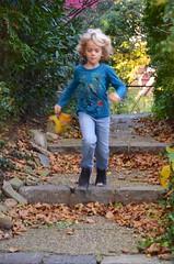Everett On The Secret Path (Joe Shlabotnik) Tags: november2018 foresthills fall queens everett autumn foresthillsgardens justeverett 2018 foliage afsdxvrzoomnikkor18105mmf3556ged