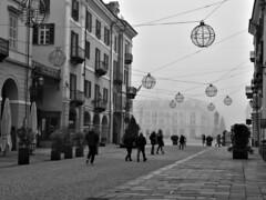 IMG_3776 -   Mist and Cold. - Nebbia e freddo. (angelo appoloni) Tags: via roma piazza galimberti nebbia passanti infreddoliti globi per luminarie fog people chilled globes for illuminations