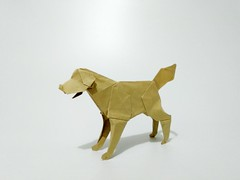 拉布拉多 (guangxu233) Tags: paper art paperart paperfolding origami origamiart handmade dog 折纸 折り紙 折り紙作品