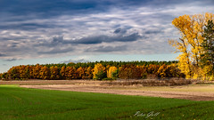 Herbstfarben - Fall colors (Peter Goll thx for +12.000.000 views) Tags: 2018 autumn natur herbst dechsendorf nature erlangen bayern deutschland de nikon nikkor d750 fall color colour farben bunt colorful sky himmel