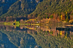 Lots to reflect upon these days... (echumachenco) Tags: lake water reflection autumn autumncolors fall november mirror grass pasture shore weed plant tree forest mountainside thumsee badreichenhall berchtesgadenerland berchtesgadeneralpen bayern bavaria germany deutschland nikond3100