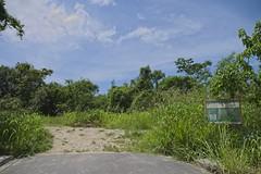 Entrada (mcvmjr1971) Tags: ilha do pontal lagoa piratininga niteroi mmoraes nikon d800e lens sigma 2435 art f20