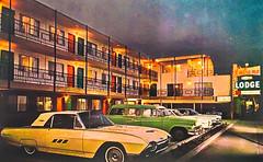 American Postcard (Thomas Hawk) Tags: america cabanalodge california sfmoma sacramento sanfrancisco usa unitedstates unitedstatesofamerica car motel neon postcard us fav10 fav25