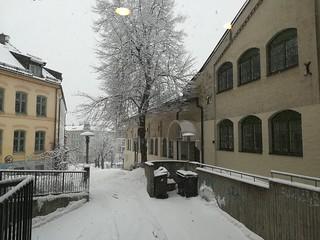 Oslo 18 febbraio 2018 (14)