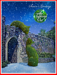 Season's Greetings from The Topiary Cat (Rich Saunders) Tags: surreal surrealism surrealist richardsaunderssurrealist richardsaunders richardsaunderssurreal fantasy fantastic unreal art artist artistic representational hertford hertfordshire popsurrealism technique psychedelic drug drugs sixties seventies 60s 70s saunders richardmsaunders pop dali salvadordali thetopiarycat topiary cat feline cats greencat foliage magic fairytale imagination imaginary photoshop montage photomontage photocomposition photographic photograph christmas xmas snow seasonsgreetings xmascard