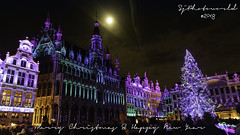 Brussels Grande Place (SjPhotoworld) Tags: belgium belgië belgique brussels bruxelles grandplace winter plaisirdhiver christmas newyear happyholidays explore exotic color colors tree canon canonef24105mmf4lisusm challenge flickr flickrelite holiday toerist tourism tourist