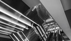 fashionable architecture (Blende1.8) Tags: interior abstract abstrakt escalator escalators modern contemporary modernarchitecture modernearchitektur lines linien iphone 8plus iphone8plus mobileshot urban monochrome monochrom mono schwarzweis blackandwhite blackwhite bw sw