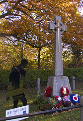 Lest we forget to remember we need PEACE. (Englepip) Tags: lestweforget cenotaph wreath uk soldier trees autumn cross poppies 11112018