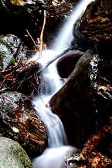 Agua de seda (fernanmz74) Tags: agua seda water hmm montseny barcelona barna spain natural nature naturephotography naturaleza senderismo adventure 7dwf longexposure long nikon sigma