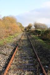Track (Capt' Gorgeous) Tags: railway track pyle rails