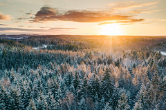 Winter wilderness (Eaglewood Photography) Tags: winter wonderland drone aerial dronephotography aerialphotography sunrise snow latvia forest sun sunlight