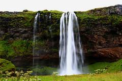 Seljalandsfoss , Iceland (Red Not Rab) Tags: seljalandsfoss landscape waterfall iceland nature