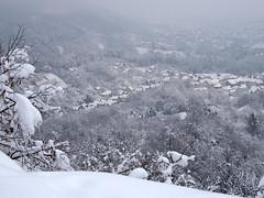 előkelő, gyönyörű tél / imposing, beautiful winter (debreczeniemoke) Tags: tél winter hó snow fehér white erdő forest fa tree táj land tájkép landscape nagybánya baiamare olympusem5