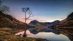 Buttermere Lone Tree FB (petebristo) Tags: buttermere lakebuttermere sunset lonetree reflections